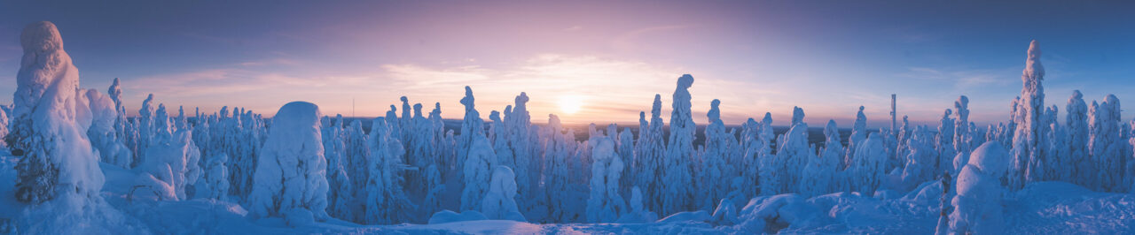 Koli, the national views of Finland